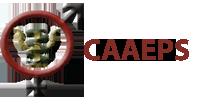 Caaeps - Lais Novaes